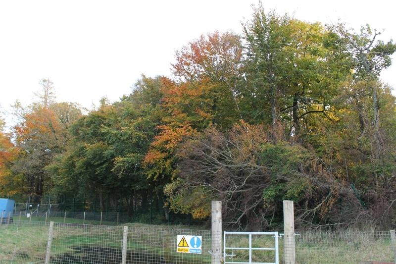 castle-woods-external-16-medium