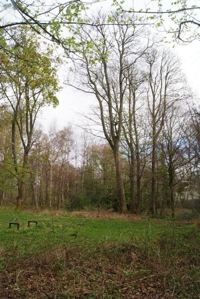 castle-woods-internal-01-medium