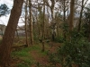 castle-woods-internal-04-medium