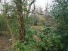 castle-woods-internal-06-medium