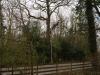 view-from-duchess-01-medium