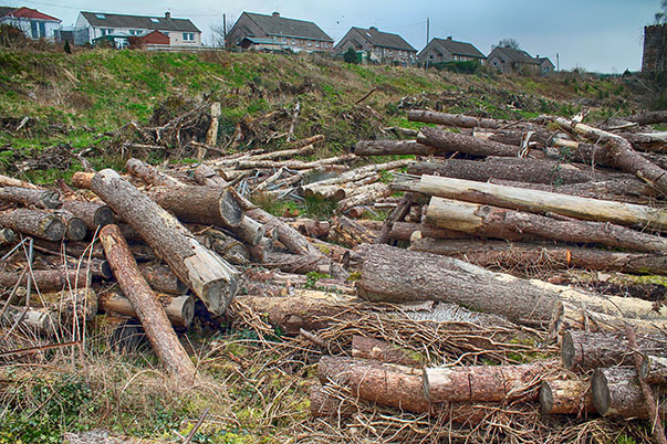 piled-debris-march-2015