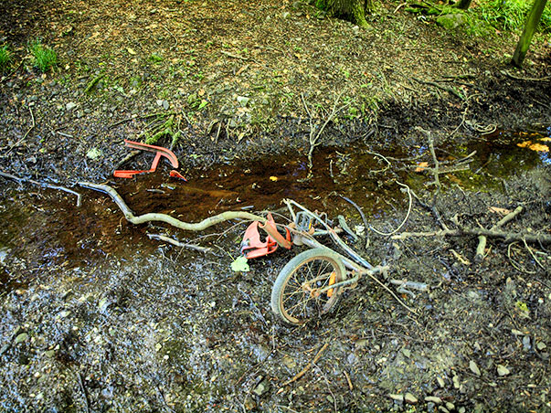 bike-in-ditch