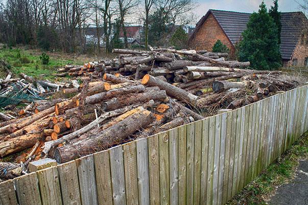 logs-