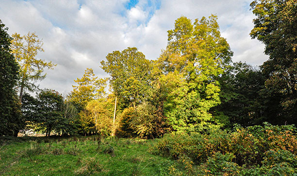Castle Woods Helensburgh